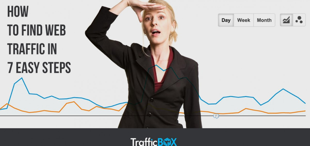Find Web Traffic