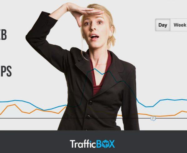 Find Web Traffic