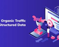 Boost Organic Traffic with Structured Data